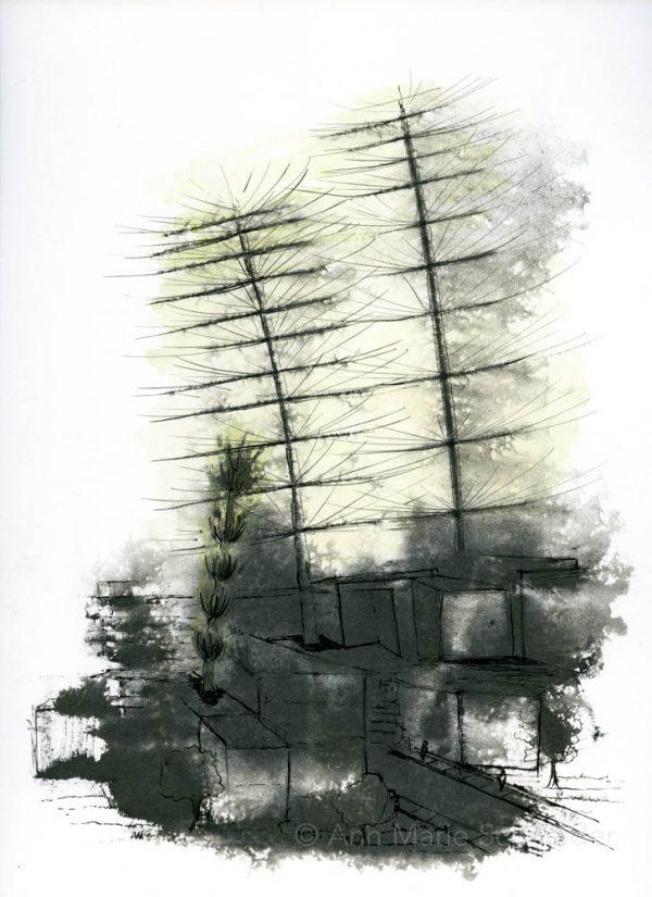 monoprint, image of giant equisetum ferns overtaking Seattle, black and white